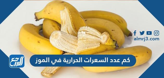 كم عدد السعرات الحرارية في الموز موقع المرجع
