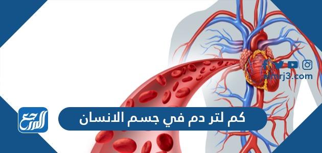 كم لتر دم في جسم الانسان