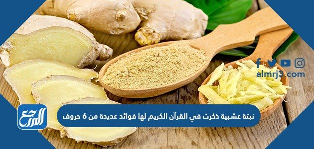 نبتة عشبية ذكرت في القرآن الكريم لها فوائد عديدة من 6 حروف