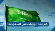 كم عدد الوزارات في السعودية