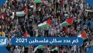كم عدد سكان فلسطين 2021