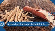 هل عشبة الاشواجندا موجودة في السعودية