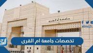 تخصصات جامعة ام القرى