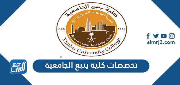 تخصصات كلية ينبع الجامعية