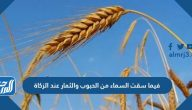 فيما سقت السماء من الحبوب والثمار عند الزكاة
