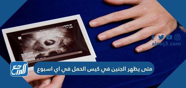 متى يظهر الجنين في كيس الحمل في اي اسبوع
