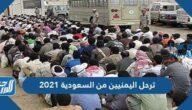 حقيقة ترحيل اليمنيين من السعودية 2021