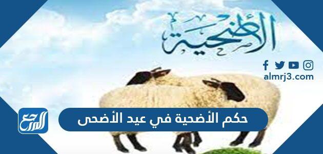 حكم الأضحية في عيد الأضحى