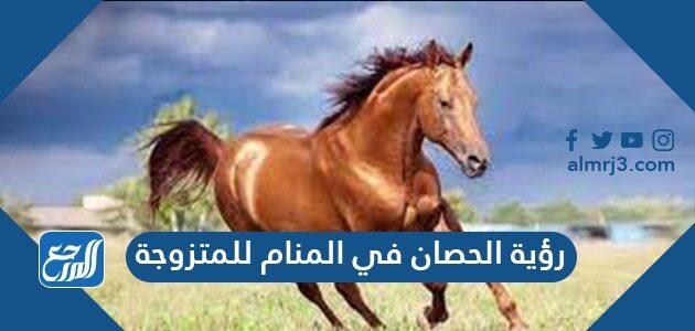 رؤية الحصان في المنام للمتزوجة
