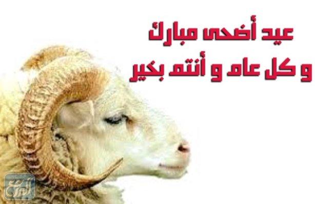 صور سكرابز خروف العيد 2021