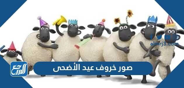 صور خروف عيد الاضحى 2021 اجمل ثيمات وخلفيات ورمزيات خروف العيد