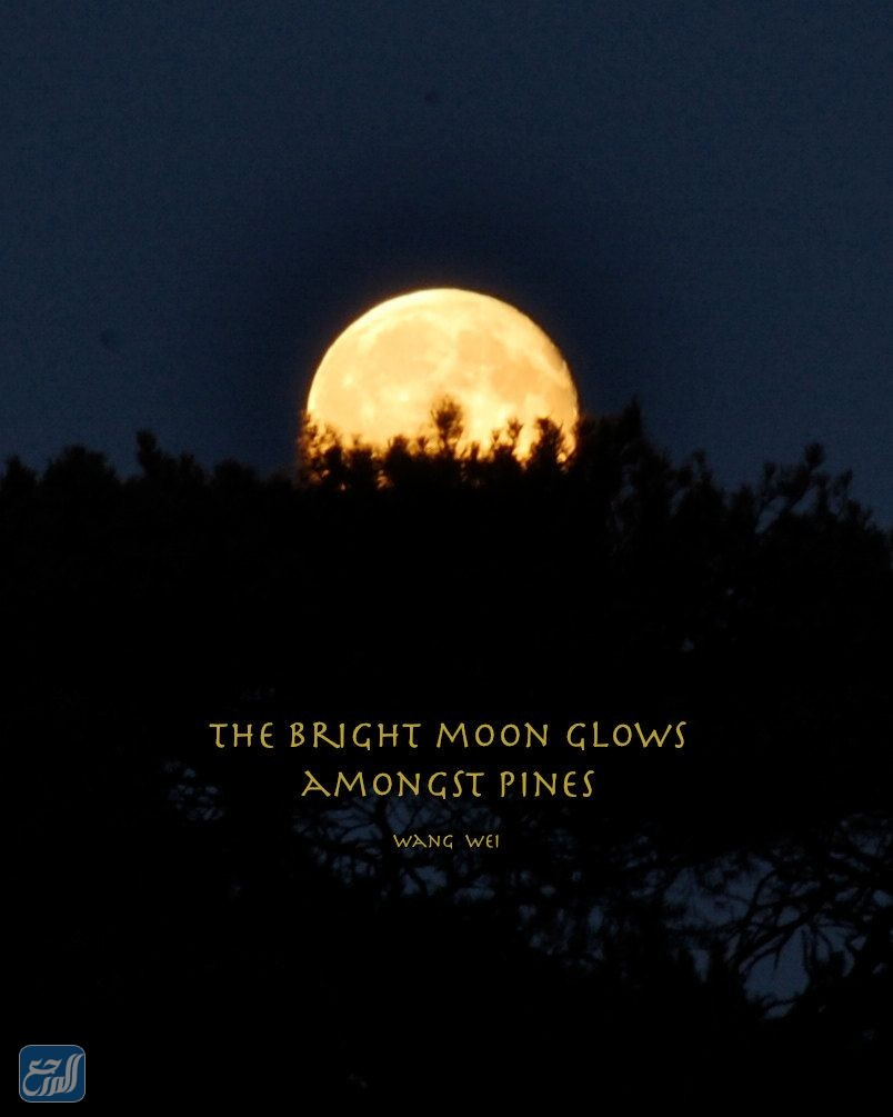 صور عبارات عن القمر بالانجليزي