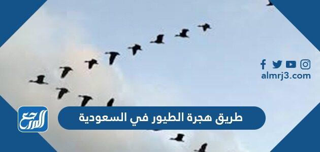 طريق هجرة الطيور في السعودية