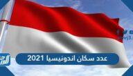عدد سكان اندونيسيا 2021