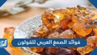 فوائد الصمغ العربي للقولون والجهاز الهضمي