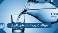 ما هي فوائد شرب الماء على الريق وما الاطعمة الغنية بالماء