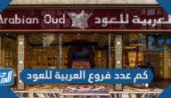 كم عدد فروع العربية للعود