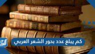 كم يبلغ عدد بحور الشعر العربي