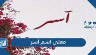 معنى اسم آسر Aser وصفات حامل الاسم وشخصيته