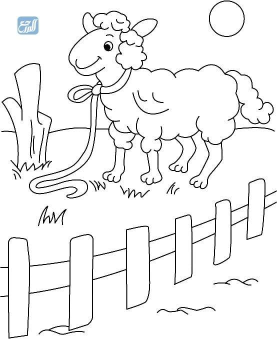 سكرابز خروف العيد للأطفال