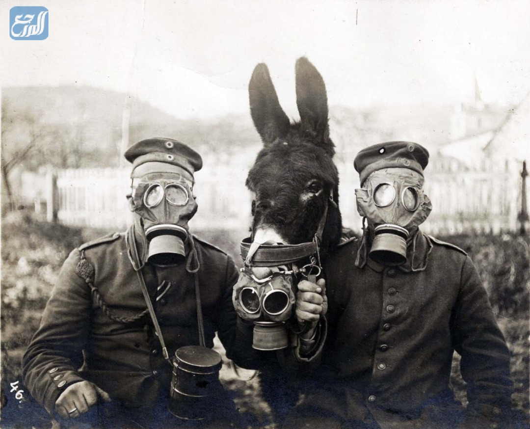 من أول من استخدم الغازات السامة في الحروب