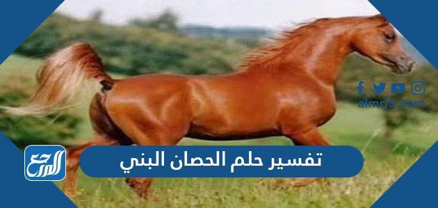 تفسير حلم الحصان البني