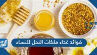 فوائد غذاء ملكات النحل للنساء