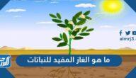 ما هو الغاز المفيد للنباتات