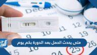 متى يحدث الحمل بعد الدورة بكم يوم