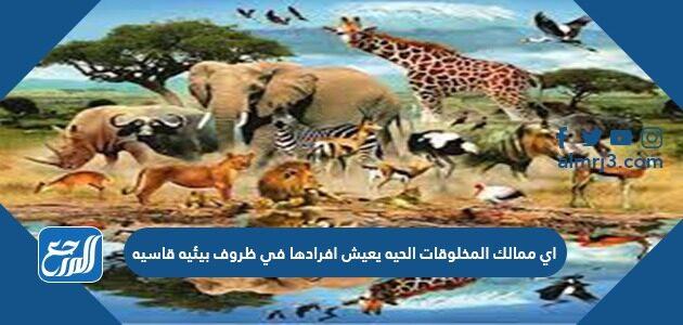 أي ممالك المخلوقات الحية يعيش أفرادها في ظروف بيئية قاسية