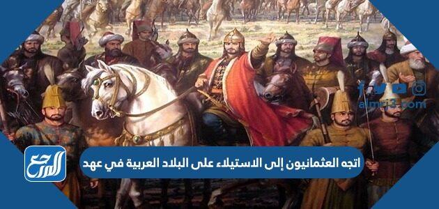 اتجه العثمانيون إلى الاستيلاء على البلاد العربية في عهد
