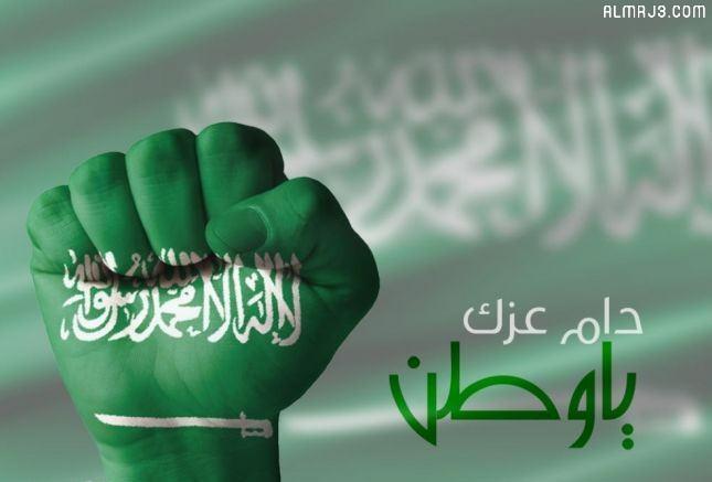 اليوم الوطني 91 دام عزك يا وطن