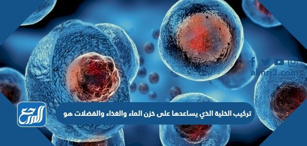 تركيب الخلية الذي يساعدها على خزن الماء والغذاء والفضلات هو