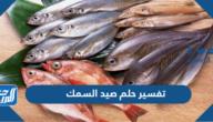 تفسير حلم صيد السمك في المنام للعزباء والمتزوجة والحامل