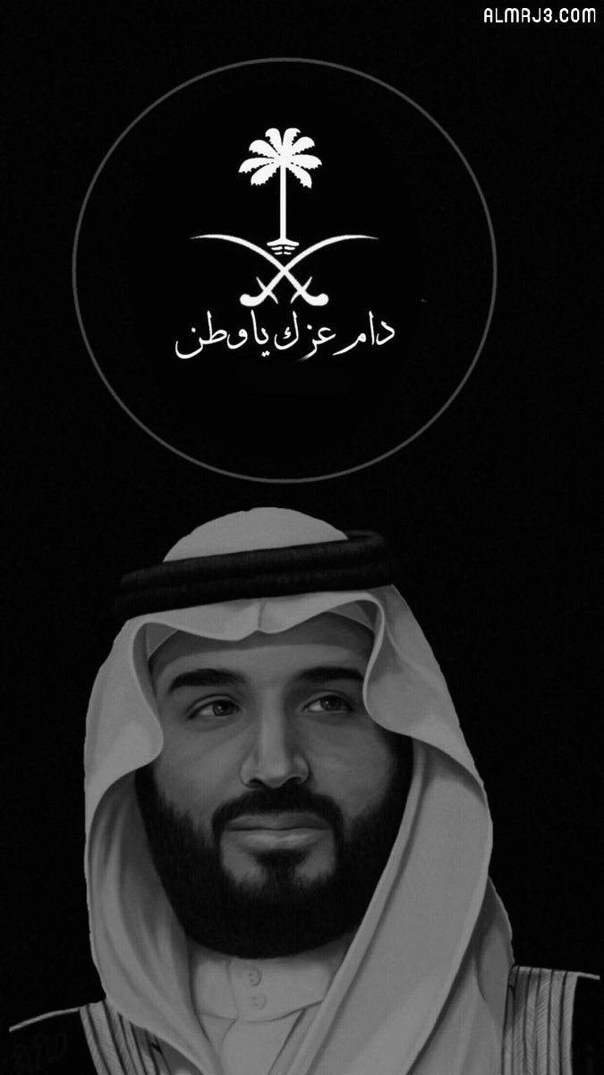 ثيمات دام عزك يا وطن