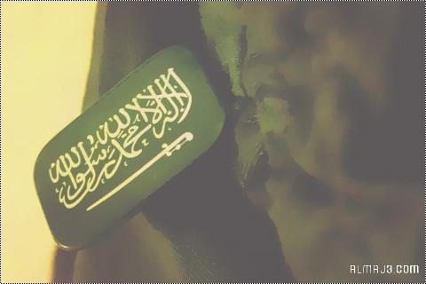 خلفيات وطنية سعودية للتصميم 91
