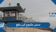 سجن جلبوع اين يقع