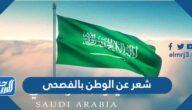 شعر عن الوطن السعودي بالفصحى