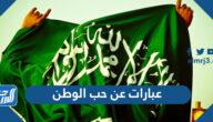 عبارات عن حب الوطن السعودية قصيرة