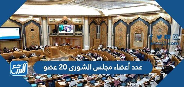 عدد أعضاء مجلس الشورى 20 عضو