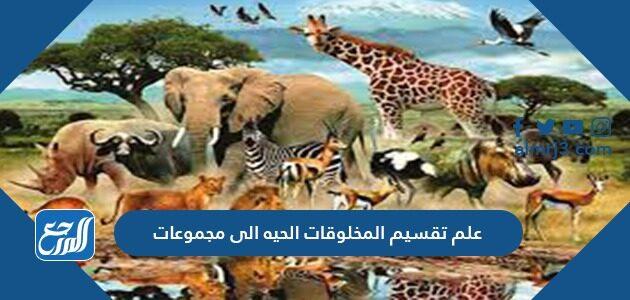علم تقسيم المخلوقات الحيه الى مجموعات