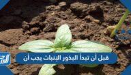 قبل أن تبدأ البذور الإنبات يجب أن
