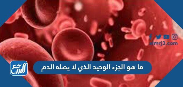 ما هو الجزء الوحيد الذي لا يصله الدم