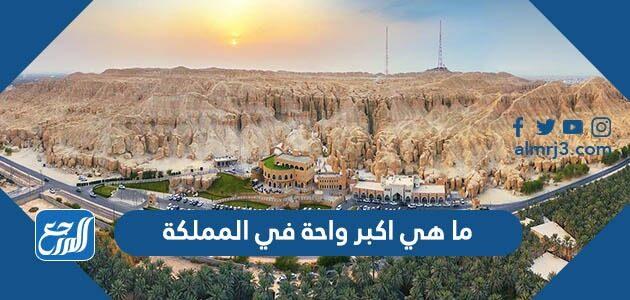 ما هي اكبر واحة في المملكة