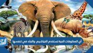 أي المخلوقات الحية تستخدم الخياشيم، والجلد في تنفسها