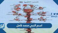 اسم النبي محمد كامل