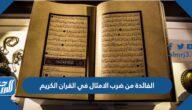 الفائدة من ضرب الأمثال في القرآن الكريم