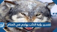 تفسير رؤية الذئب يهاجم في المنام لابن سيرين والنابلسي وابن شاهين