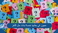 عجوز في بطنها خمسة بنات حل اللغز