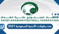 عدد بطولات الأندية السعودية 2021